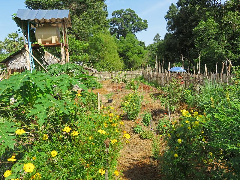 08 - un nouveau jardin